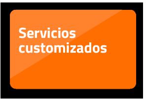 Servicios customizados